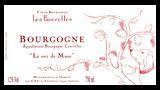 Bourgogne Rouge Le Nez de Muse - ブルゴーニュ ルージュ ル・ネ・ド・ミューズ