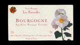 Bourgogne Rouge Cuvée Coccinelle - ブルゴーニュ ルージュ キュヴェ・コクシネル