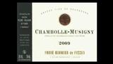 Chambolle-Musigny - シャンボール・ミュジニー