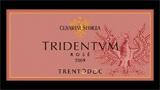 Tridentvm Brut Rosé Millesimato - トリデントゥム ブリュット ロゼ ミレジマート