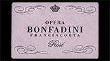 Opera Rosé Brut - オペラ ロゼ ブリュット
