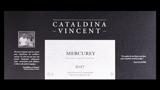 Cataldina Vincent Mercurey Blanc - カタルディーナ・ヴァンサン メルキュレイ ブラン