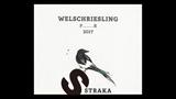 Welschriesling P......R - ヴェルシュリースリング P……R