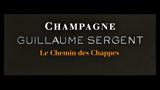 Guillaume Sergent - ギヨーム・セルジャン