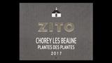 Chorey-lès-Beaune Rouge Plantes des Plantes - ショレ・レ・ボーヌ ルージュ プランド・デ・プラント