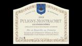 Puligny-Montrachet Les Enseignères - ピュリニー・モンラッシェ レ・ザンセニェール